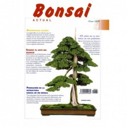 Bonsai Actual Nº 84
