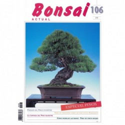 Bonsai Actual Nº 106