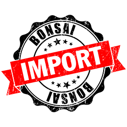 Bonsai Import